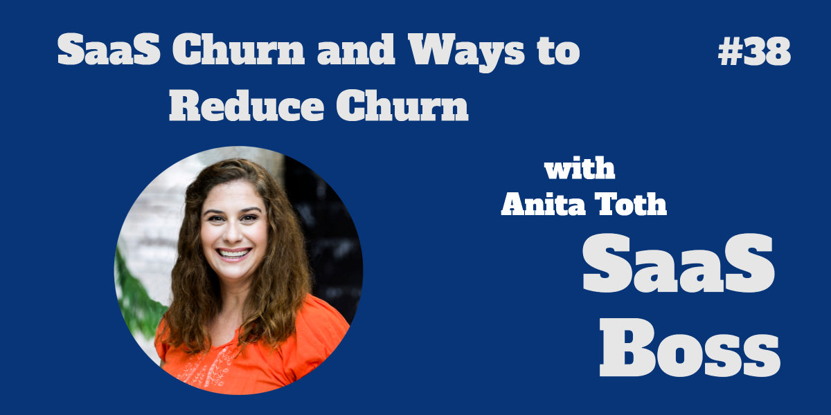 SaaS Churn and Ways to Reduce Churn, with Anita Toth